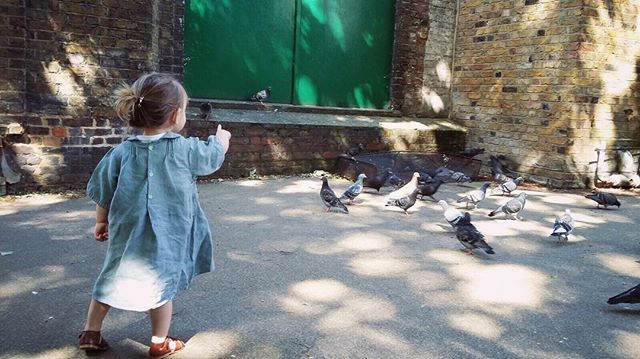 Toddler amongst the pigeons.